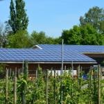 Invitation til dialog om udbudsbetingelser for soludbud