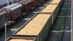Nye regler om støtte til biomasse-elproduktion